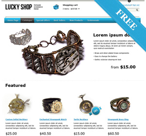 Free WordPress E-commerce Theme