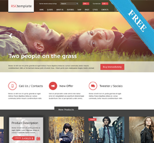 Stalytus WordPress Theme